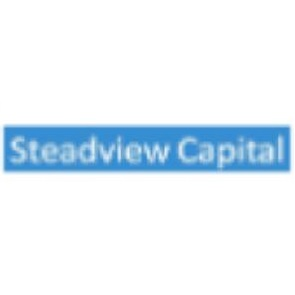 Steadview Capital-企查查